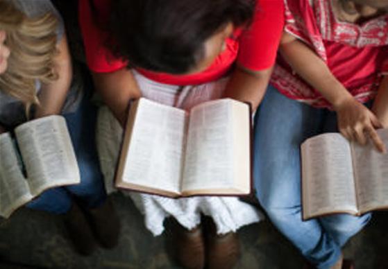 Womens Life Discipleship Group